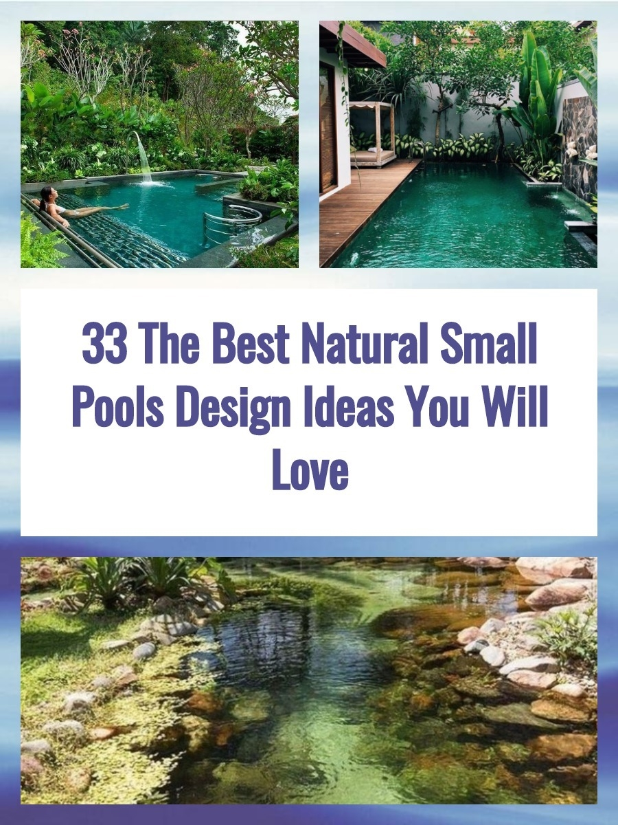 33 The Best Natural Small Pools Design Ideas You Will Love