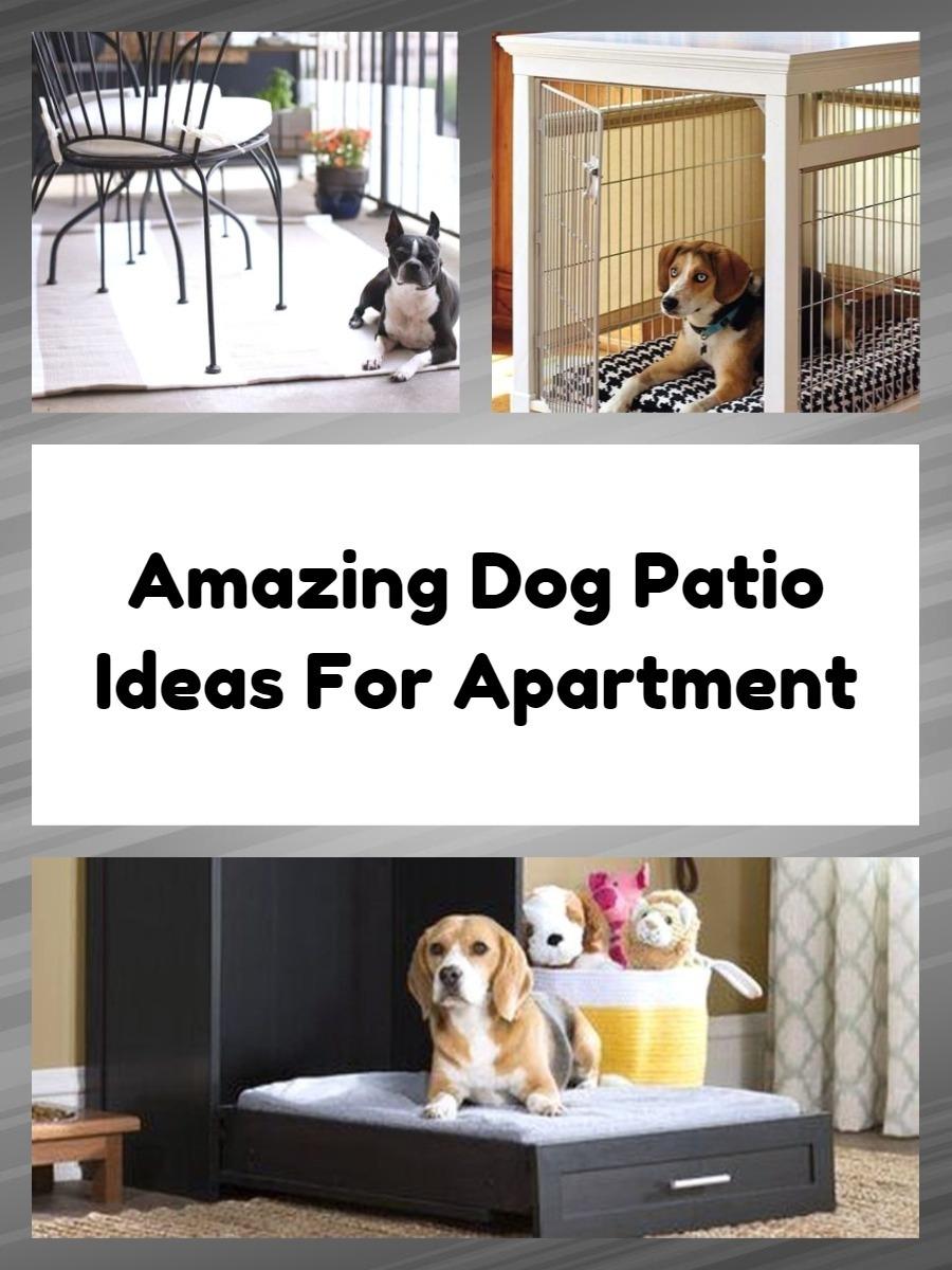 Amazing Dog Patio Ideas For Apartment