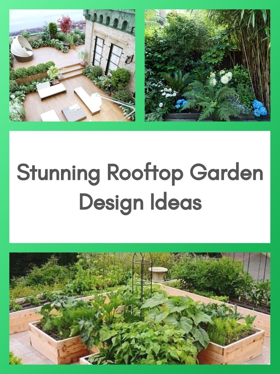 Stunning Rooftop Garden Design Ideas