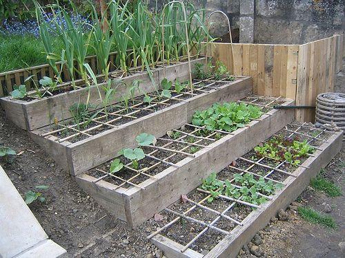 Hillside Vegetable Garden Ideas