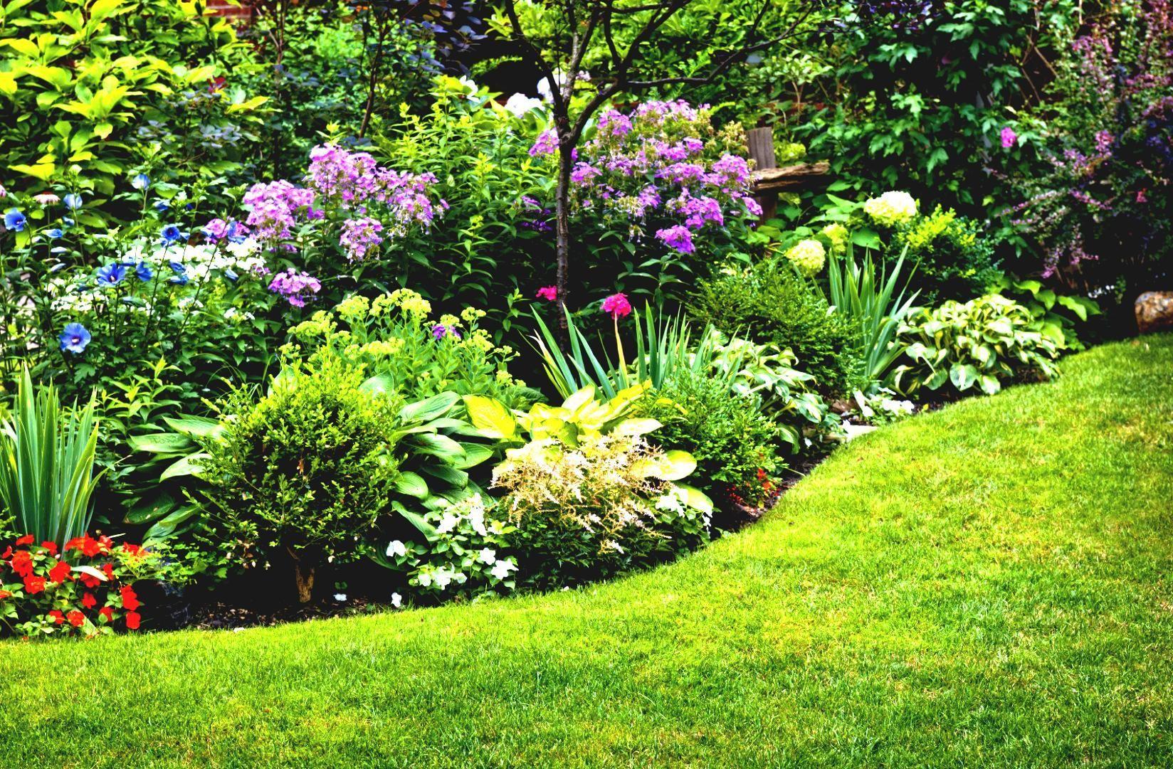Flower Garden Ideas For Full Sun