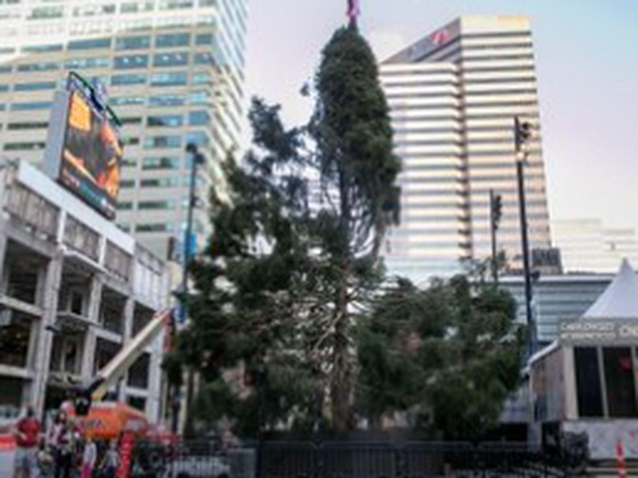 Cincinnati Christmas Tree 2020