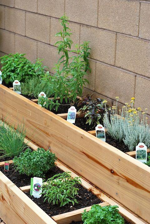 Backyard Herb Garden Ideas