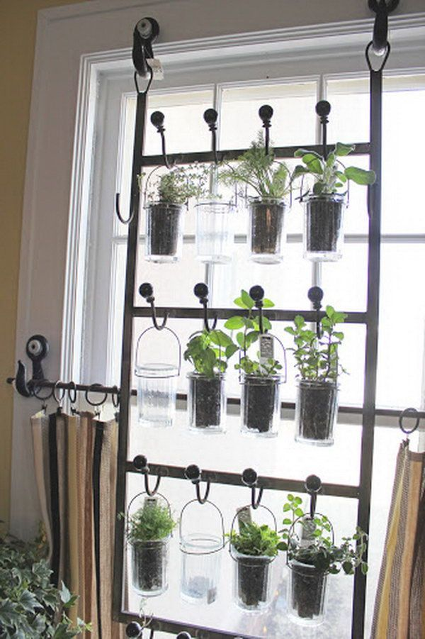 Inside Herb Garden Ideas