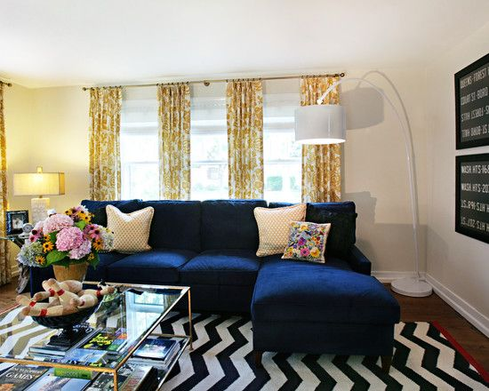 Blue Couch Living Room Ideas