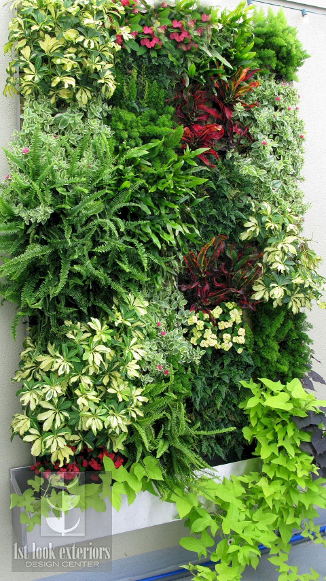Outdoor Vertical Garden Ideas